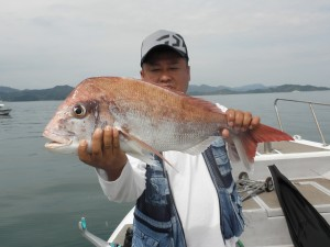真鯛-広島遊漁船海斗