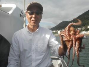 タコ-広島遊漁船海斗