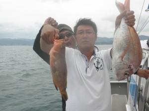 アコウ・タイ-広島遊漁船海斗