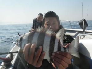 イシダイ-広島遊漁船海斗
