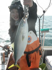 ヤズ-広島遊漁船海斗