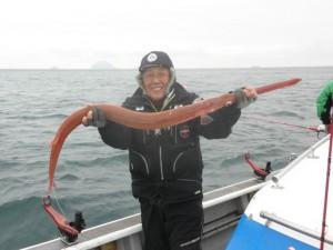 アカヤガラ-広島遊漁船海斗