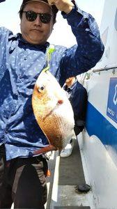 タイ・アコウ-広島遊漁船海斗