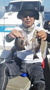 イサキ-広島遊漁船海斗