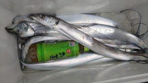 タチウオ-広島遊漁船海斗