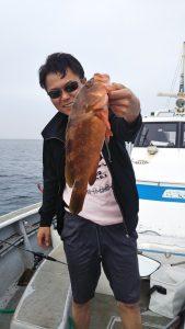 アコウ-広島遊漁船海斗