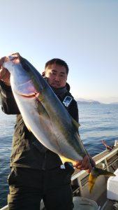 広島湾のブリ