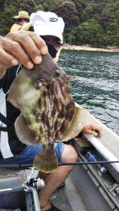 キスゴ―広島遊漁船海斗